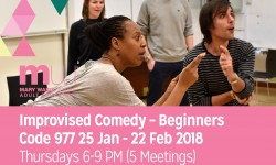 comedy, comedy courses, london courses, central london courses, affordable courses, performance, adult education, mary ward centre,